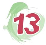 칼럼-13